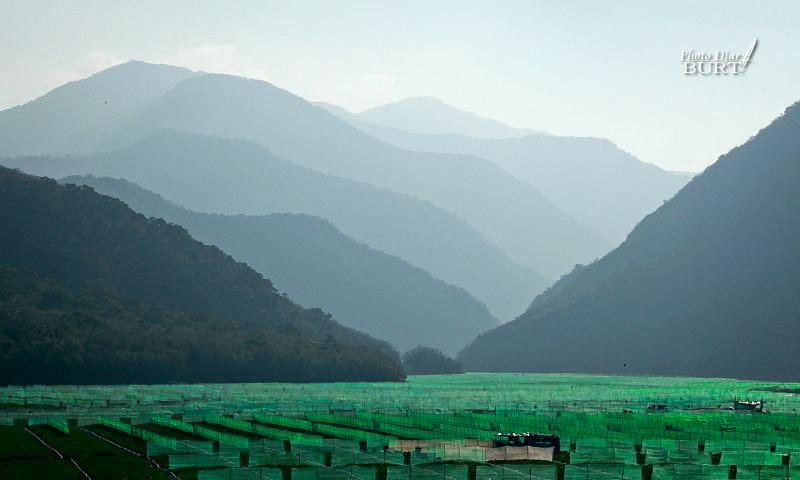 2011枋山溪上的層山與西瓜田