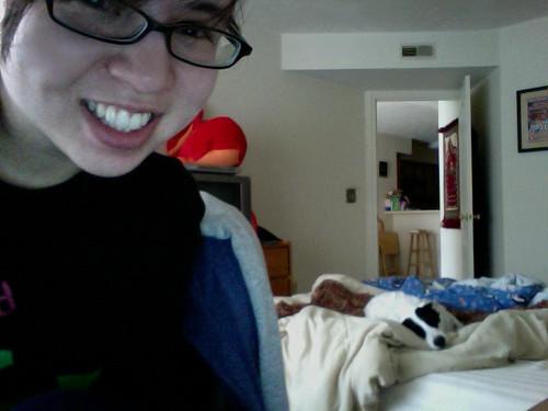 working writer sleeping pup