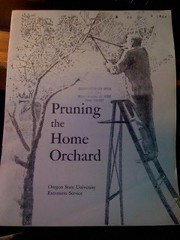 Image for Pruning the home orchard
