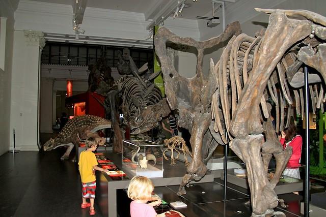 Dinosaurs Australian Museum