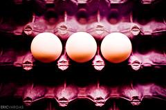 Day 47/365 - Three's A Crowd *Explored* (EMIV) Tags: canon eggs carton 5d 430ex 35l
