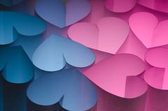 Flickr Themed Hearts (morozgrafix) Tags: pink blue love hearts sigmamacro105mmf28 strobist nikond7000 diypfav 52weeks2011