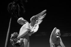 La Reina Cemetery 2, Cienfuegos, Cuba, 2003 (deemixx) Tags: cemetery angel tomb burial restingplace crypt afterlife mortality religiousicon cienfuegoscuba marbleangel