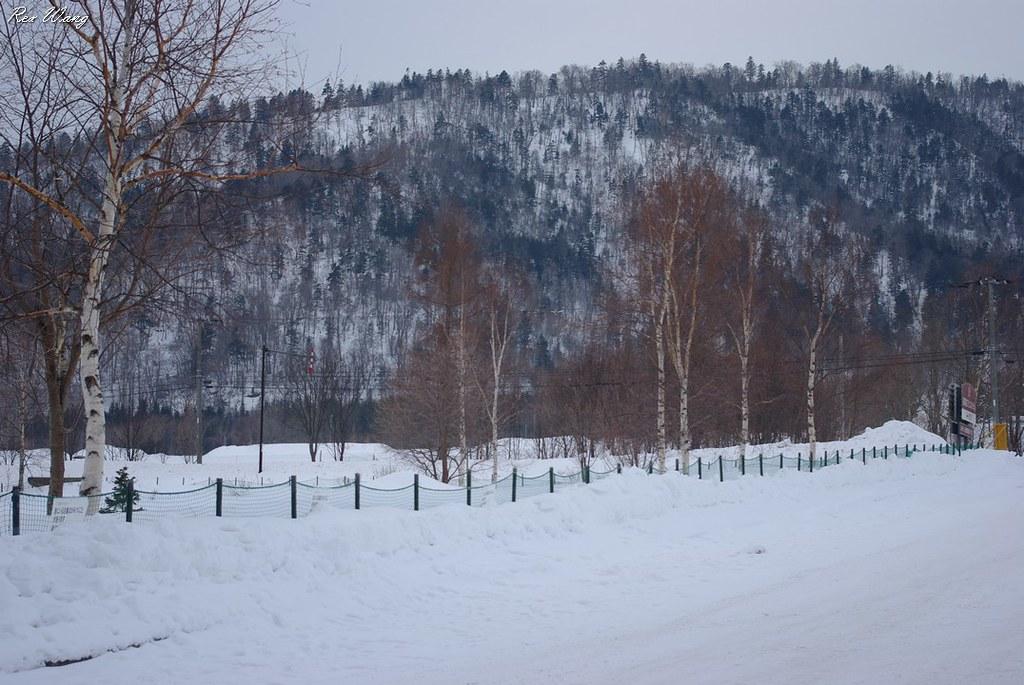 北方雪の國度﹍2011寒冬北海道旅遊風景記實 Hokkaido