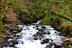 Bridal Veil Falls from Bridge (* Ian Rogers *) Tags: fall water oregon river waterfall columbia falls waterfalls gorge bridal bridalveilfalls hiway veill