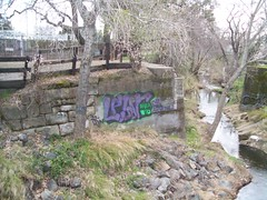 CUZ IMA CRIMINAL (*Breeding The Disease*) Tags: life wild nature creek painting graffiti woods paint shots criminal illegal 20 tagging eleven bombing twenty lr cuz ima lure btd hba 2011 b2d lewer levn lewar lewor lewr 20levn