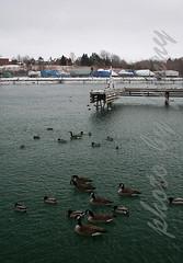 Port Dalhousie 1 (JENNYSKIM) Tags: ontario canada stcatharines portdalhousie lakesidepark portdalhousieyachtclub