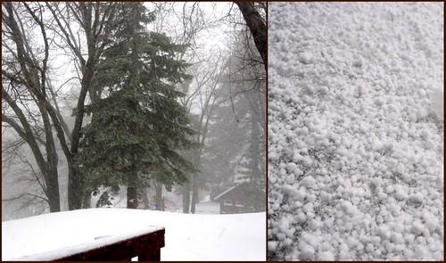 snow dippin' dots