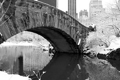 Bridge in Central Park, New York (chrisgault) Tags: park new bridge trees winter snow ny ice water grass central manhatten royk