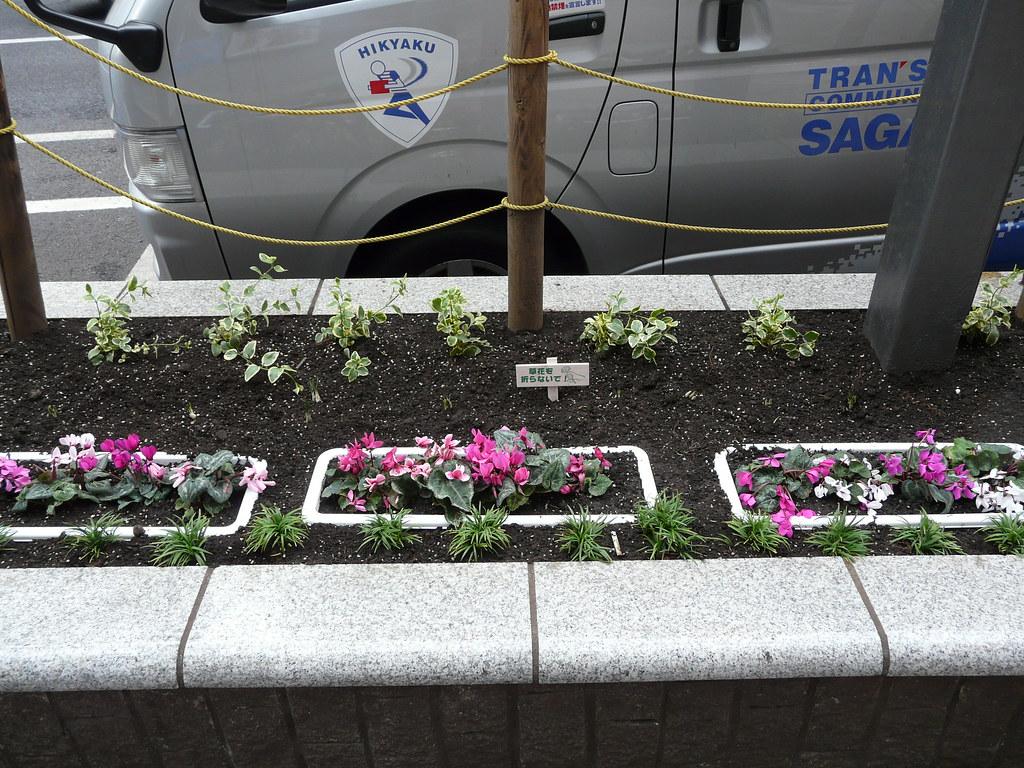 Shibuya Greening Project Update