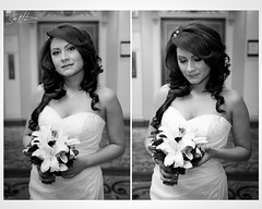 (San Martin Photography) Tags: wedding chicagoil canonef28135mmf3556is winter2010 palmerhousehotel canoneos40d canonspeedlight580exii