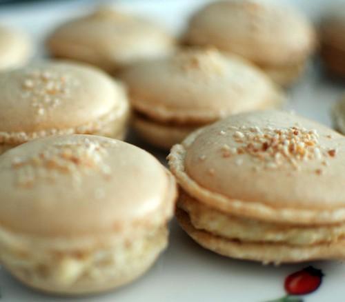 praline-macarons