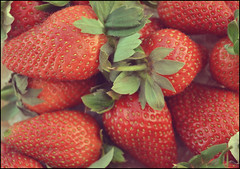(Betsy-May) Tags: food colour closeup fruit project strawberries tasty