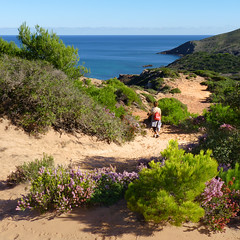 A lovely hike to Cala del Pilar beach (Bn) Tags: blue red sea moon holiday beach water forest swimming swim geotagged island back spain sand woods mediterranean cove dunes dune rocky peaceful calm unesco formation virgin pines limestone vegetation nudist coastline remote calas nudity bays climate isolated menorca laid secluded minorca reddish unspoiled balearic maan hillsides naturists nuturism caladelpilar geo:lon=3980715 geo:lat=40050388 goemenorca
