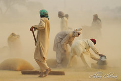 Salam in ko (Salute to them) -: Explored :- (Abbrar Cheema) Tags: pakistan people rural workers folk culture labour worker d200 dust punjab lahore cultural cheema abbrar labror