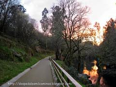 senda del rio Lérez ( Pontevedra )