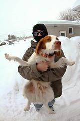 What's up (Alexandre Poulin) Tags: dog 3 snow canada storm feet laughing canon fun march d small joy 7 fisheye tokina qubec 7d subaru doggy having wrx sti 7th blast dubstep drifting drift victoriaville backflip tercel 2011 1017mm