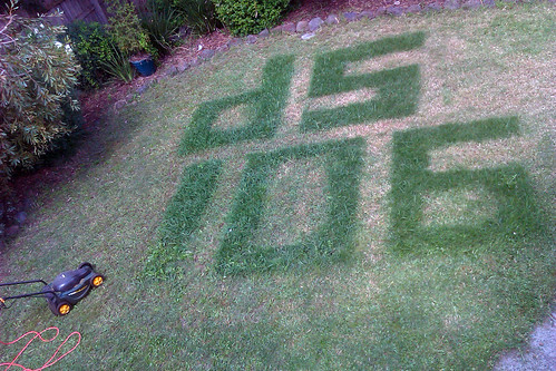 Two letter, three numerals in my lawn. ds106.