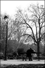 j'en penche pour vous (Mi-crobe) Tags: blackandwhite bench noiretblanc parc banc inlove publicgarden amoureux jardinpublic pascalerousseau
