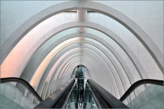 Curves of Calatrava (HannyB) Tags: station architecture grey interestingness escalator gray arches 100v10f symmetry calatrava luik santiagocalatrava liegeguillemins 30faves30comments300views 50faves50comments500views
