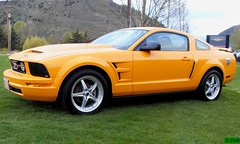 Pimped out Mustang (stevencook) Tags: orange ford wyoming mustang jacksonhole v6 pimpedout stevencook scook stevencookrealty