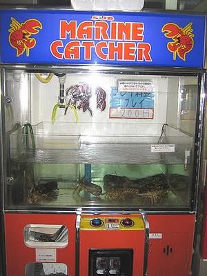 bizarre_vending_machines_02