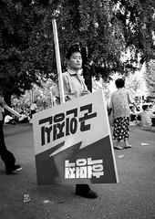 Bringing propaganda for National Day - Pyongyang North Korea (Eric Lafforgue) Tags: war asia korea asie coree northkorea