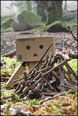 danbo's camp fire (gigsnapper.com) Tags: camping tree dan woods campfire danbo canon60mmefsmacrolens revoltech canoneos500d amazonjp danboard revoltechdanbo