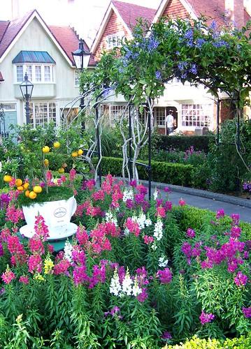 Tea Garden Edit