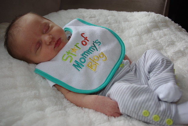 Star of Mommy's Blog Bib
