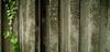 (dhill4910) Tags: providence rhodeisland risd collegehill tych maxsdigi noplannoproblem