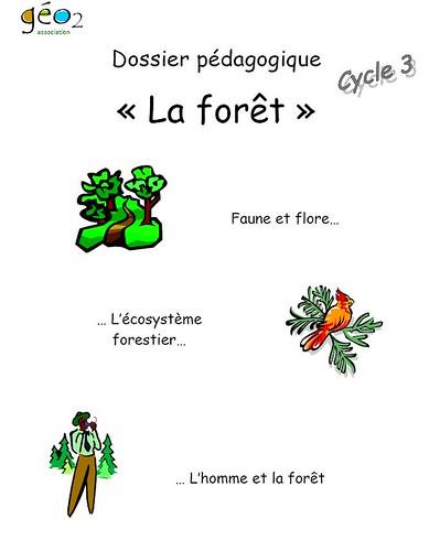 dossier la forêt
