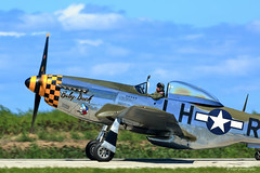 P-51 Mustang - Baby Duck (dpsager) Tags: airshow2016 babyduck cleveland clevelandnationalairshow dpsagerphotography fighter military ohio p51mustang wwii aircraft airplane