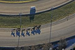 Harness Racing (Aerial Photography) Tags: people sport by munich mnchen mood aerial menschen m schatten deu stimmung luftbild luftaufnahme obb bayernbavaria deutschlandgermany trabrennbahn trabrennen daglfing fotoklausleidorfwwwleidorfde 16012011 1ds58545