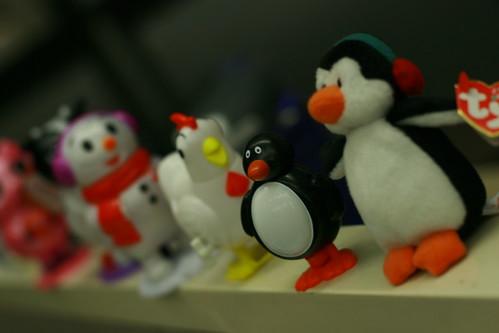 2.1 - Toy Flock