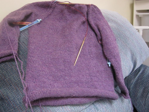 Dev's purple sweater