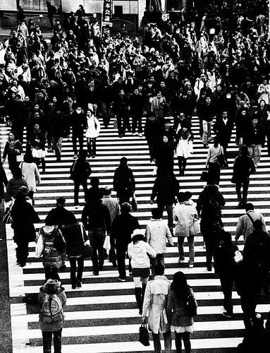 The usual Shibuya crossing madness