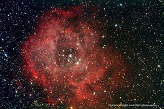 Rosette Nebula / Caldwell 49 (Simon Todd Astrophotography) Tags: longexposure canon space nebula astrophotography orion infrared astronomy dslr deepspace celestron nebulosity hydrogenalpha irishastronomy skywatcher rosettenebula cg5 450d c80ed autoguider dslrastrophotography Astrometrydotnet:status=solved starshoot Astrometrydotnet:version=14400 caldwell49 backyardeos Astrometrydotnet:id=alpha20120967887773 dslrimaging dslrcooling