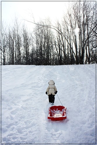 sledding (on slidey mountain!)