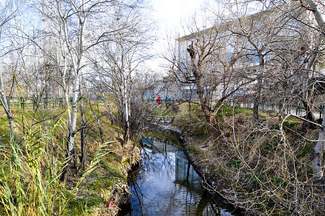 Río Huerva 4