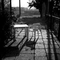 tavolo e sedia al Seven (biguz_80) Tags: 6x6 zeiss seven medium format 50 ikon ilford medio sul gennaio formato 2011 nettar panfplus savignano 51816 rubicone