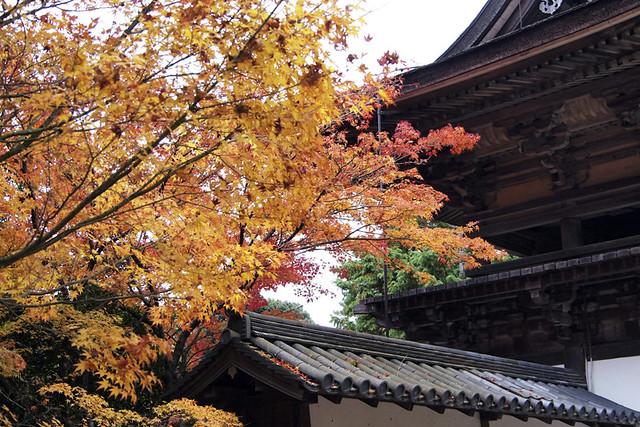 101115_150434_円成寺