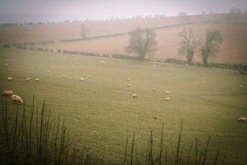 Cotwsolds hills