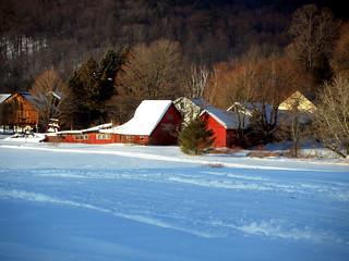 Winter's Toll 2011