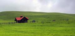 DSC_0238_39_40_hdrps (sunnaquair) Tags: road red house color green grass photoshop experimental hills waimea hilo modification kona saddle pencel