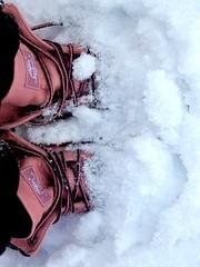 Timberland Boots (thevertigo-ofbliss) Tags: winter snow cold boots timberland