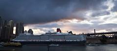 Queen Elizabeth (StephEvaPhoto) Tags: sunset eos circularquay nsw newsouthwales cunard queenelizabeth sydneycove canoneos500d sigma1750mmf28exdcos