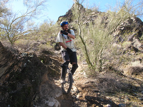 Tom dodging cacti