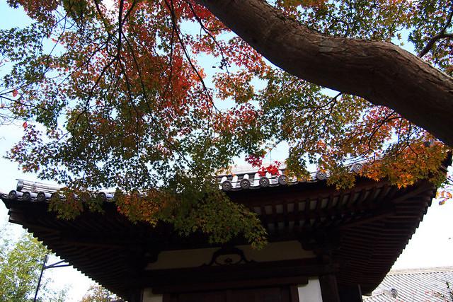 20101116_123156_新薬師寺_地蔵堂