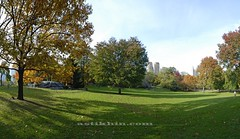 October in Central Park NYC. (astikhin) Tags: park city nyc newyorkcity blue autumn trees light sky urban brown sunlight white ny newyork tree green fall nature grass leaves yellow clouds buildings wooden view image centralpark manhattan branches central meadow peaceful falling foliage american daytime westside relaxation midpark astikhin wwwastikhincom alekssphoto